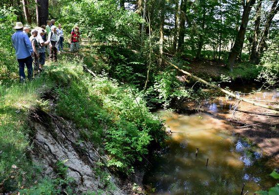 Exkursion an der Alten Dahme, Foto: Olaf Meißner