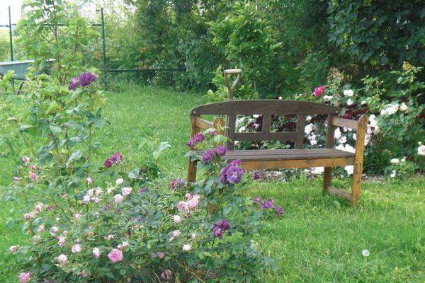 Garten von Katrin Lübcke, Foto: Katrin Lübcke