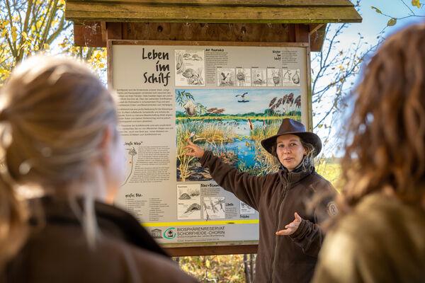 Vögel im Flug bestimmen lernen, Foto: J.Müller, Lizenz: J.Müller