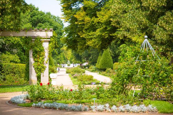 Wasserspiele im Ostdeutschen Rosengarten, Foto: Patrick Lucia