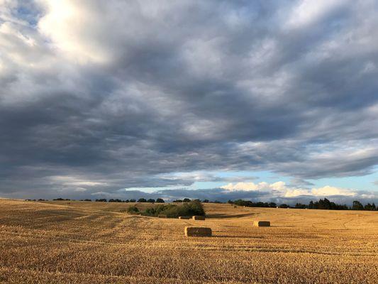 Strohballen , Foto: Anet Hoppe