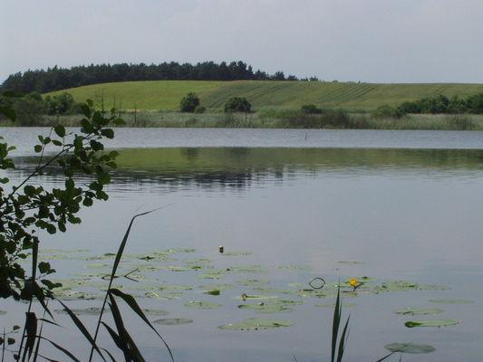 Der Streesee am Rande des Biesenthaler Beckens