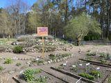 Lehmann-Garten Templin, Foto: Alena Lampe