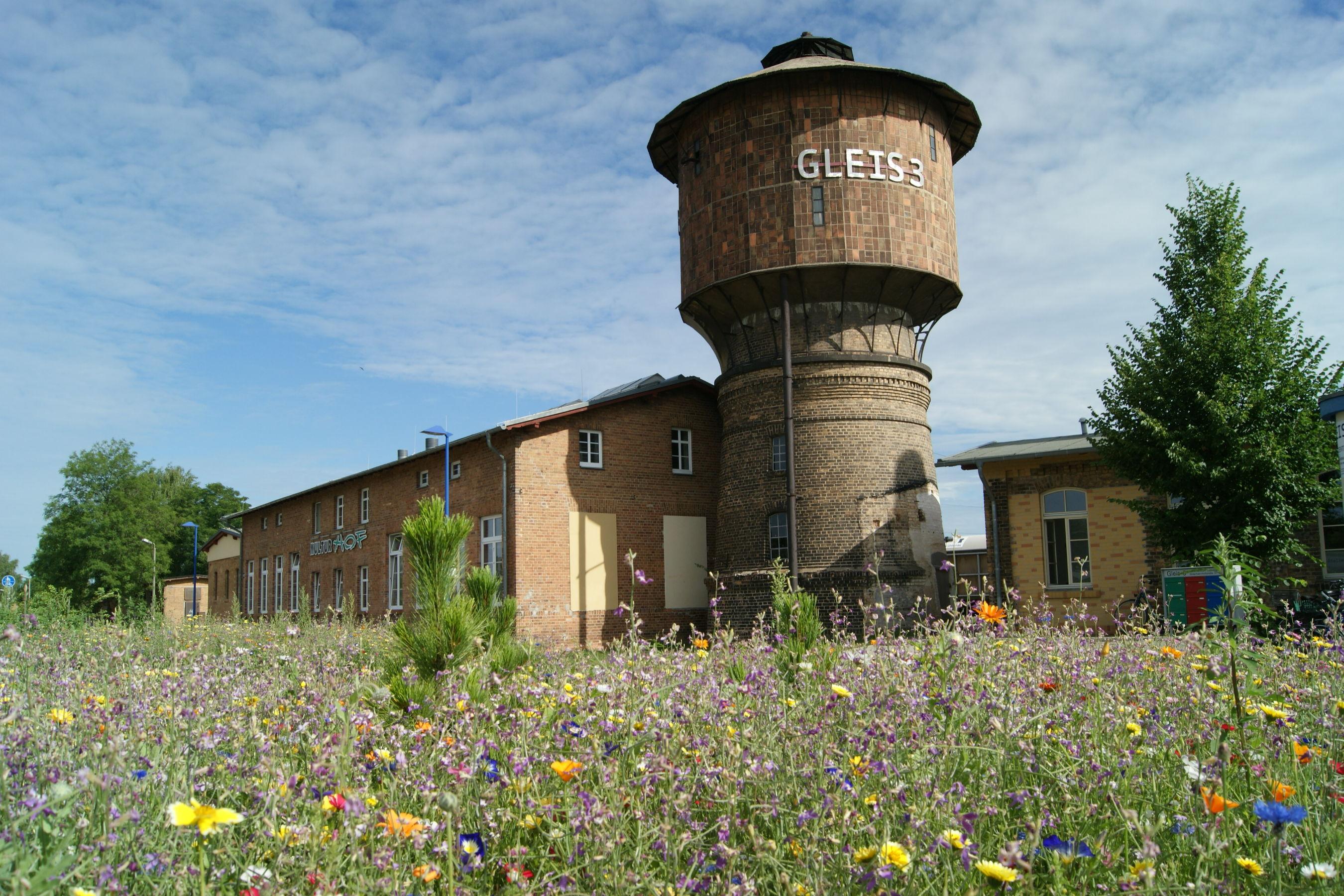 Sommerwiese vor dem GLEIS 3, Foto: Queenie Nopper