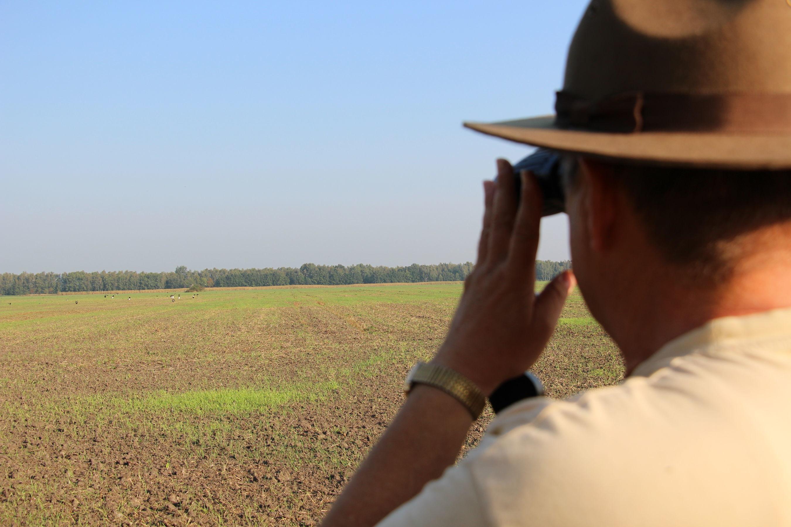 Ranger Ralf Hegewald beim Kranichzählen; Foto: Carolin von Prondzinsky