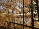 Herbstwald Mellenau, Foto: Anet Hoppe